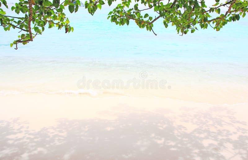 Onda del mare e della spiaggia fotografia stock