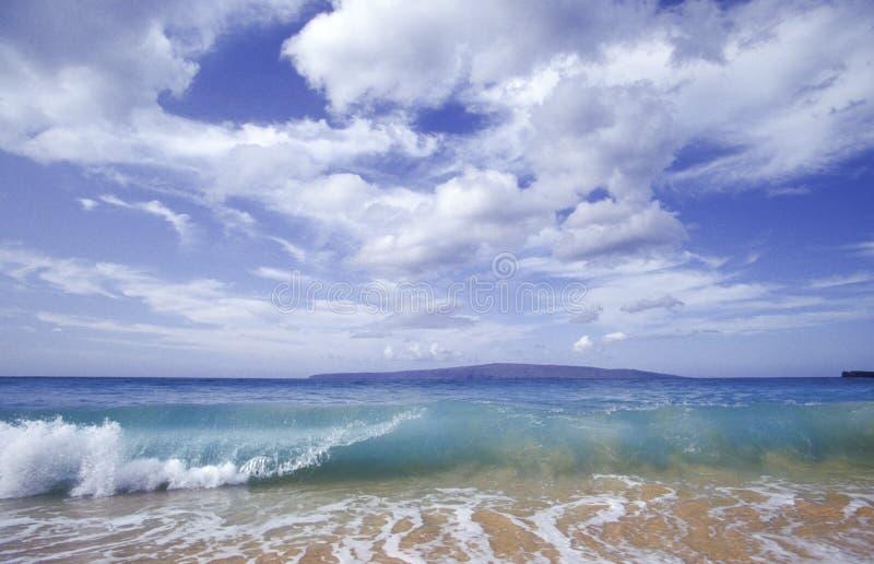Onda di oceano in Hawai fotografia stock