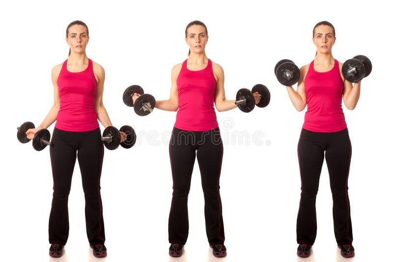 Onda do bíceps fotos de stock