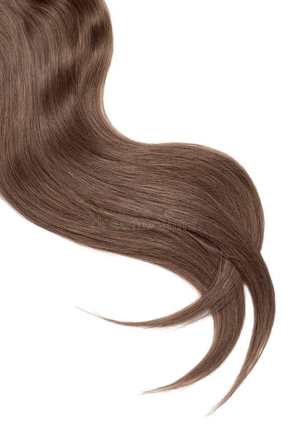 Onda do cabelo marrom natural do chocolate no fundo branco Rabo de cavalo ondulado imagens de stock