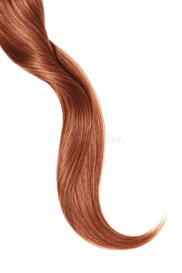 Onda do cabelo natural da hena, isolada no fundo branco fotografia de stock