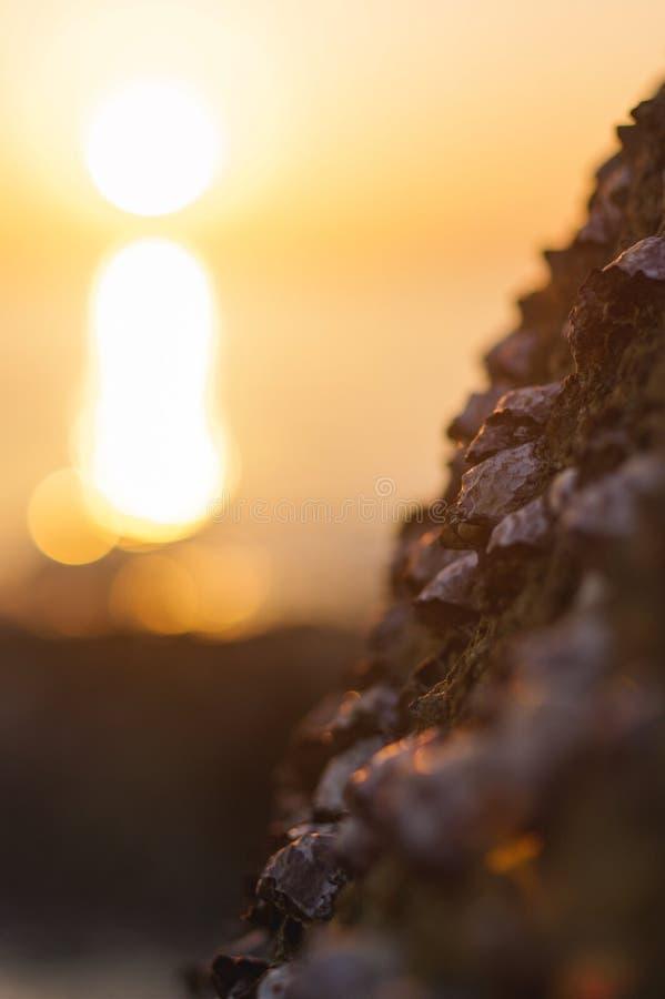 Onda e roccia del mare vicine su a tempo di tramonto con la riflessione arancio rossa del sole sull'acqua Priorità bassa vaga est fotografia stock libera da diritti