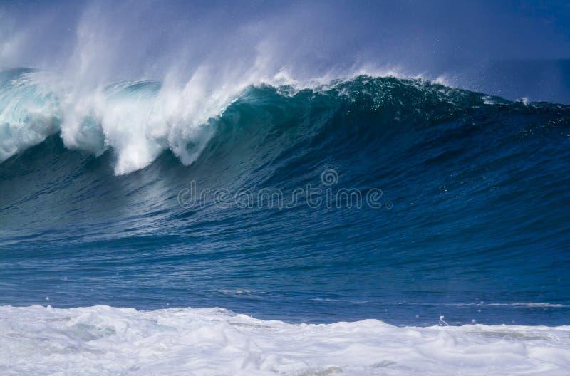 Onda gigante do oceano no Havaí fotos de stock