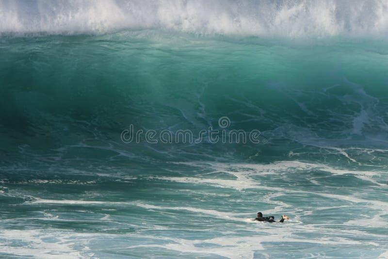 Onda gigante y una persona que practica surf solitaria fotografía de archivo