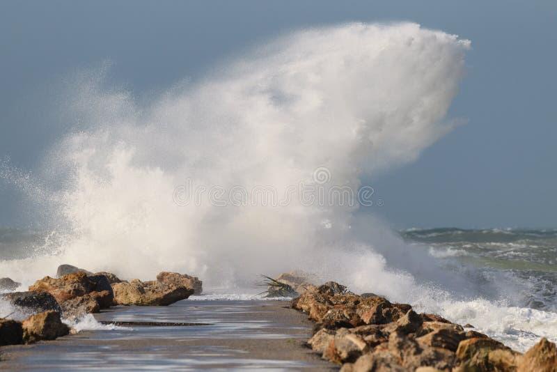 A onda magnífica deixa de funcionar no molhe norte em Veneza, Florida imagem de stock