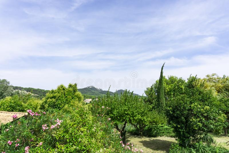 Onda pequena de nuvens macias brancas bonitas no céu azul vívido em umas horas de verão acima da montanha e em árvores verdes em  fotos de stock