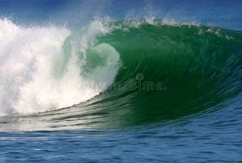 Onda praticante il surfing dell'oceano pulito fotografia stock libera da diritti
