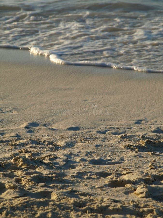 Onda que entra en la orilla en la playa arenosa foto de archivo