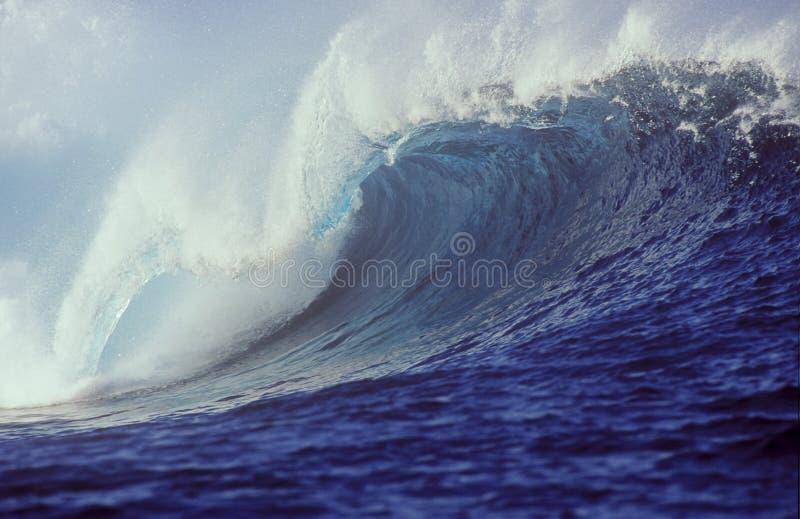 Onda tropical foto de stock