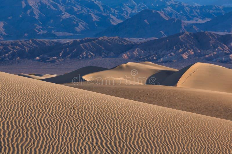 Ondas da areia sobre as dunas NASCER DE O SOL Deserto no Mesquite F imagens de stock royalty free