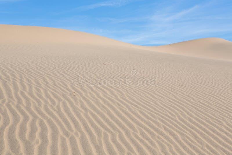 Ondas da areia sobre as dunas NASCER DE O SOL Deserto no Mesquite F imagens de stock