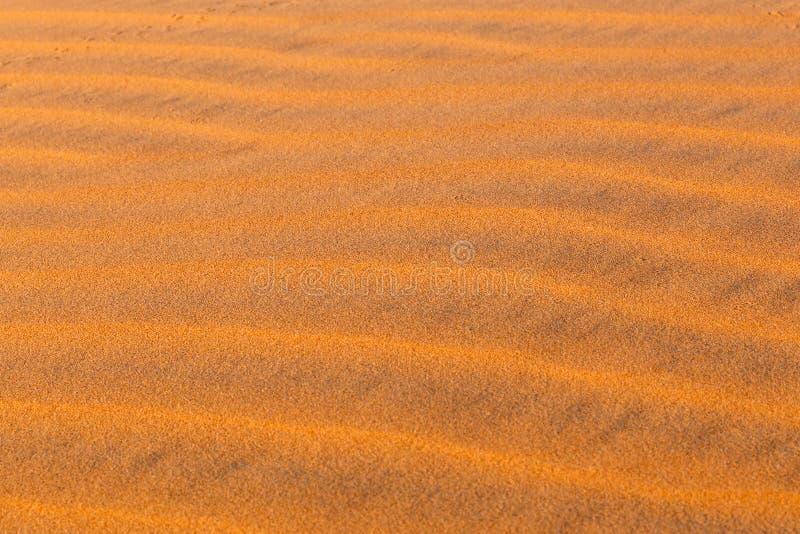 Ondas da duna em Sahara Desert fotografia de stock royalty free