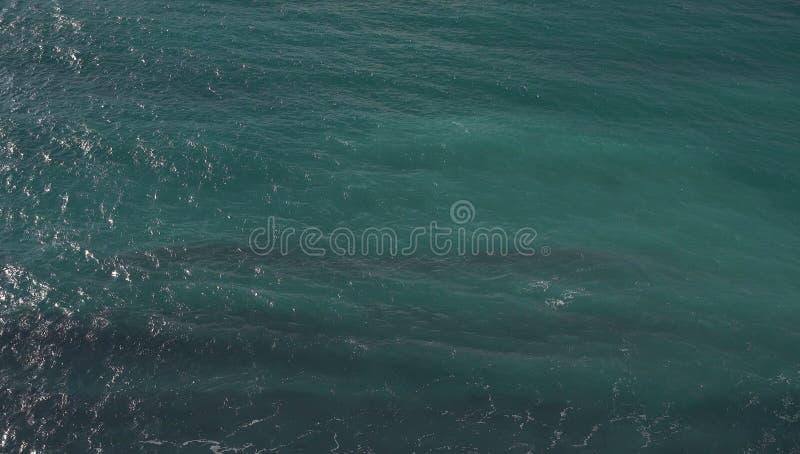 Ondas de água pequenas, oceano foto de stock royalty free
