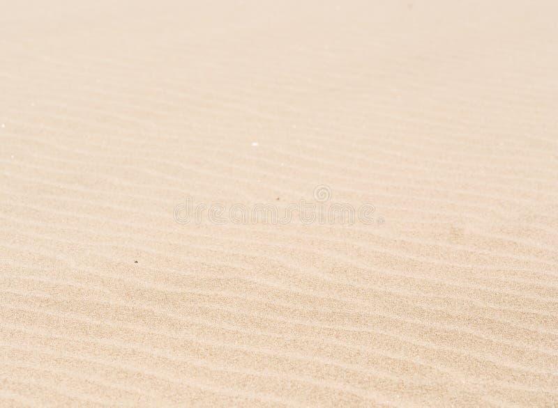 Ondas de areia fotos de stock royalty free