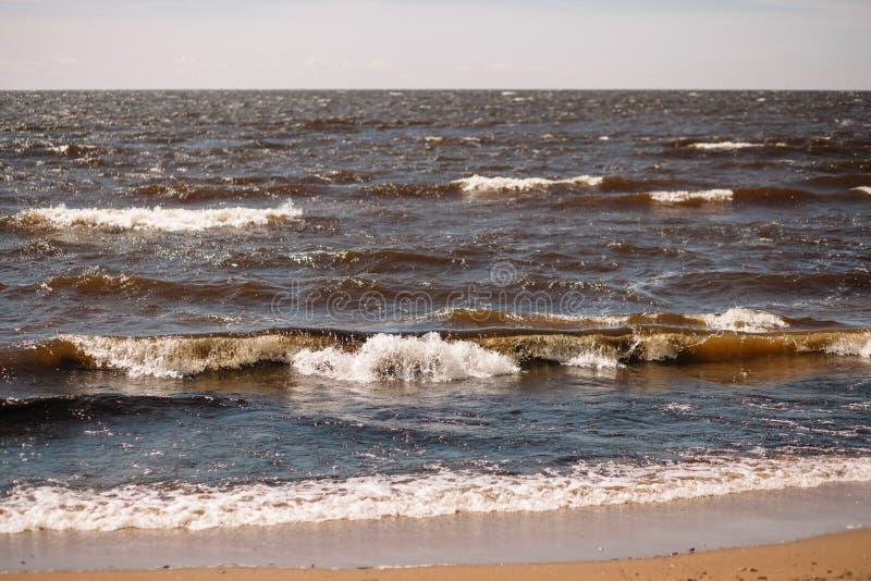 Ondas de formação de espuma da ressaca Água de Brown do Golfo da Finlândia em um dia ensolarado imagem de stock