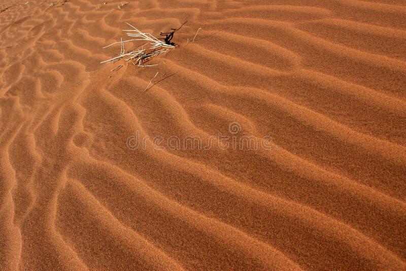 Ondas de la arena fotografía de archivo