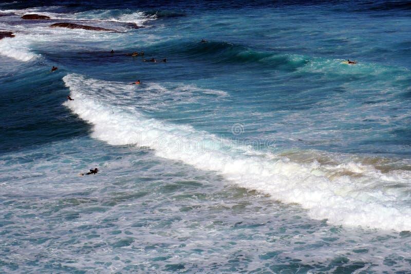 Ondas de Oceano Pacífico espumadas brancas fotografia de stock royalty free