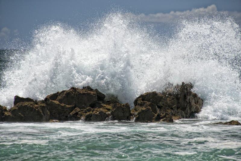 Ondas de Oceano Pacífico na costa fotografia de stock royalty free