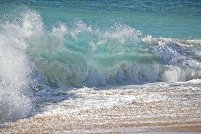 Ondas de Oceano Pacífico na costa fotos de stock royalty free