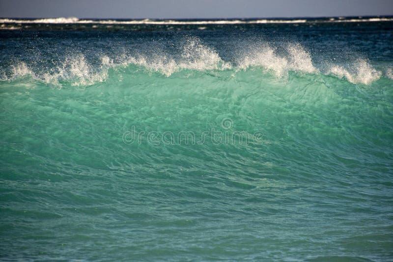Ondas de Oceano Pacífico na costa imagens de stock royalty free