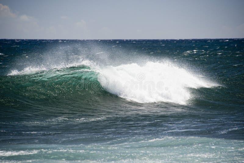 Ondas de Oceano Pacífico na costa imagem de stock