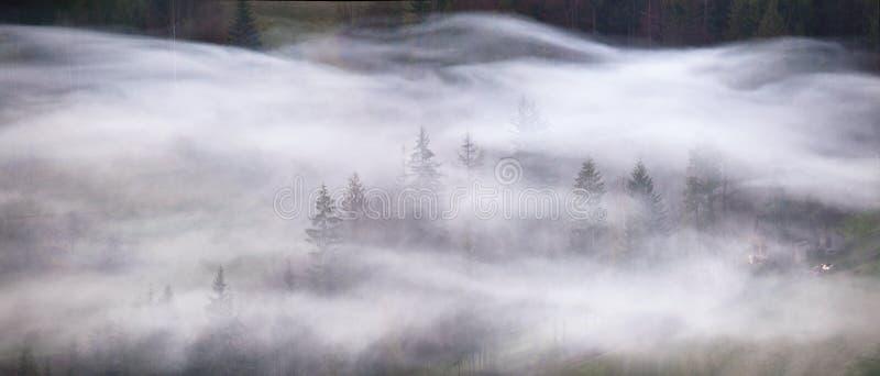 Ondas del humo en un panorama brumoso de la mañana del bosque de la montaña fotos de archivo libres de regalías