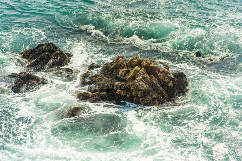 Ondas del ` s del océano fotografía de archivo