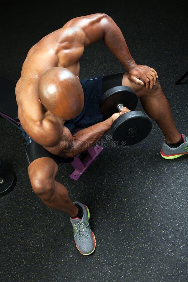Ondas do bíceps do banco fotos de stock