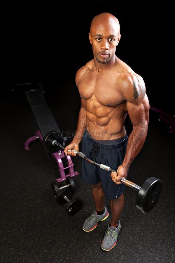 Ondas do bíceps do homem do músculo fotografia de stock
