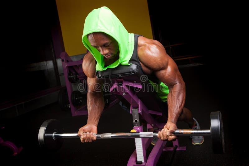 Ondas do bíceps do homem do músculo imagens de stock royalty free