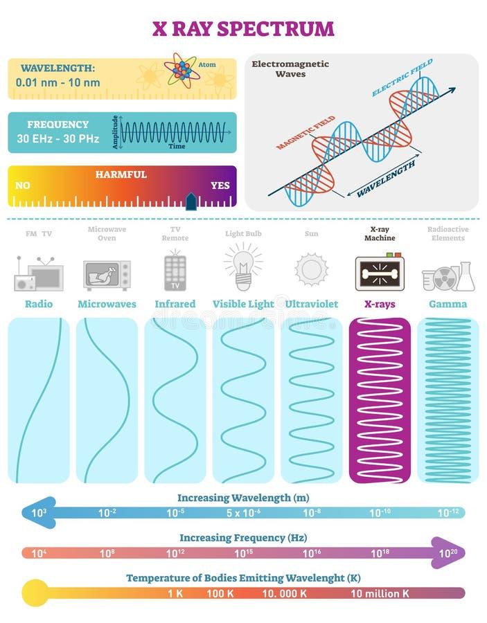 Ondas eletromagnéticas: Espectro da onda do raio X Vector o diagrama da ilustração com comprimento de onda, frequência, nocividad ilustração stock