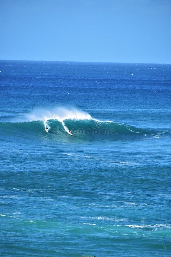 Ondas grandes en la bahía de Waimea, Oahu, Hawaii, los E.E.U.U. imagenes de archivo