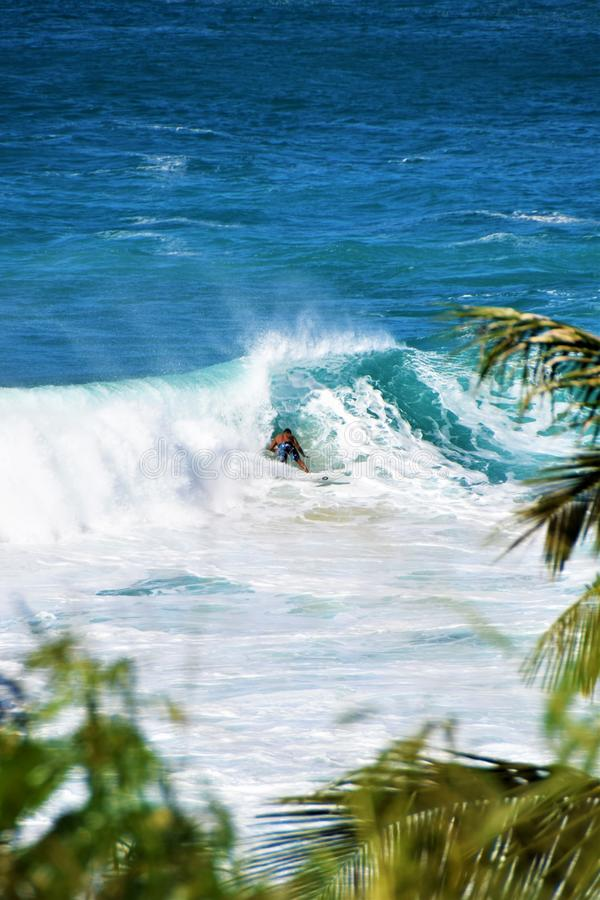 Ondas grandes na baía de Waimea, Oahu, Havaí, EUA imagem de stock royalty free