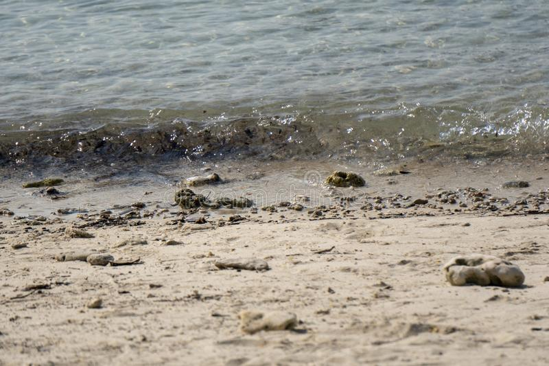 Ondas a lo largo del choque de la playa con la arena, la grava y la arena fotografía de archivo libre de regalías