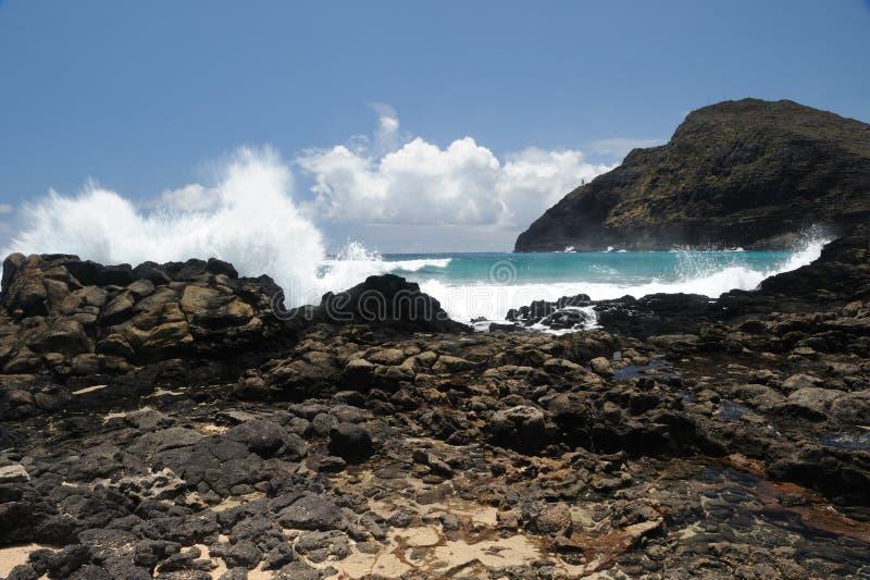 Ondas que causam um crash no seashore fotografia de stock