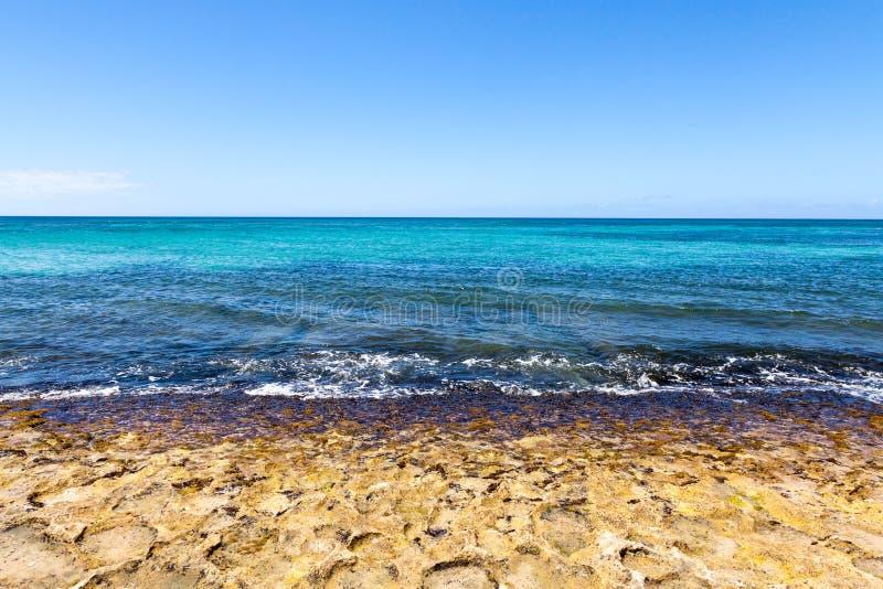 Ondas que quebram na costa da ilha tropical fotos de stock royalty free