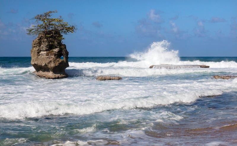 Ondas, rocas y resaca en la costa del Caribe de Costa Rica imágenes de archivo libres de regalías