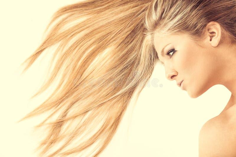 Onde dei capelli immagine stock libera da diritti