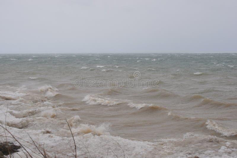 Onde della tempesta di vento del lago Erie fotografia stock libera da diritti