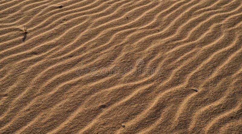 Onde di sabbia fotografia stock libera da diritti