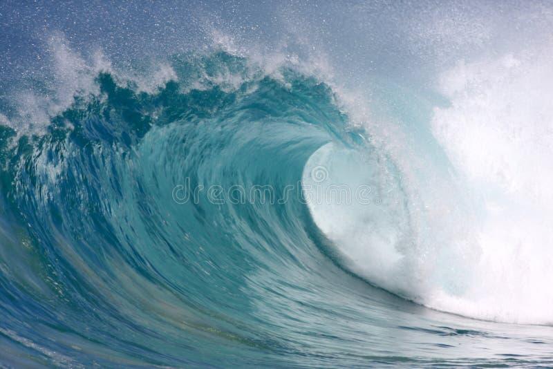 Onde hawaïenne photographie stock libre de droits