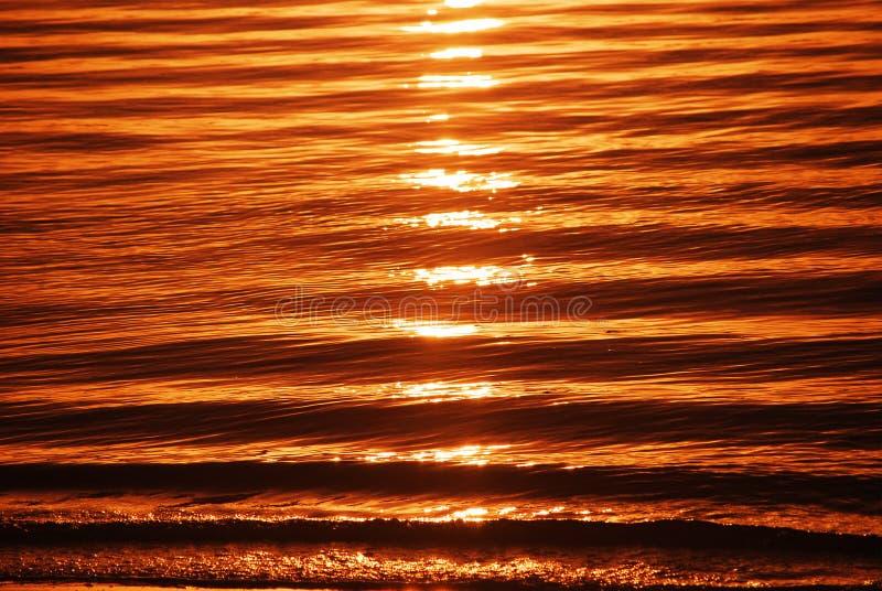 Onde nell'alba Gold Coast Australia immagine stock libera da diritti