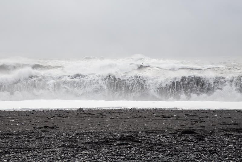 Onde nella bella spiaggia di sabbia nera vulcanica immagini stock