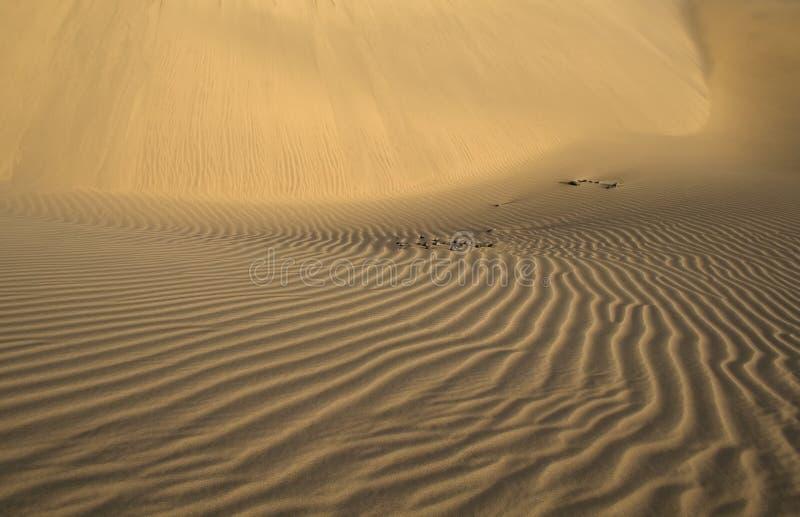 Onde nella sabbia fotografie stock