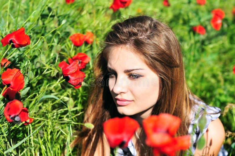 Onde os poppys selvagens crescem fotografia de stock