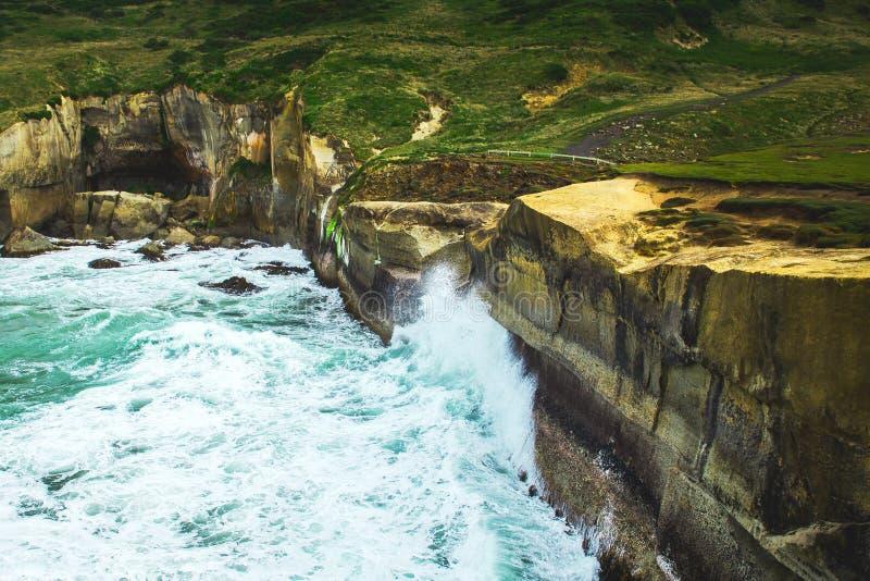 Ondeggi schiacciando le rocce, spiaggia del tunnel a Dunedin, Nuova Zelanda fotografie stock libere da diritti