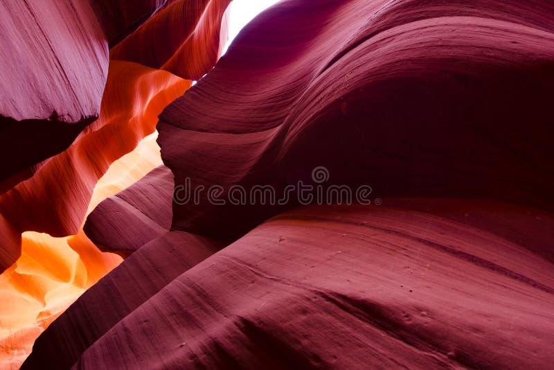 Ondeggia la combinazione di bellezza di colori, di forme e di luce in un elega fotografia stock libera da diritti
