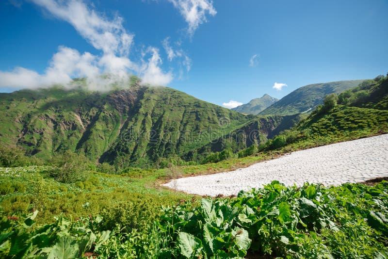 Onder Alpiene Weiden en Gletsjers in de Bergen van de Kaukasus Rusland, Sotchi, Krasnaya Polyana, Rosa Khutor Hoogte 2300m royalty-vrije stock afbeelding