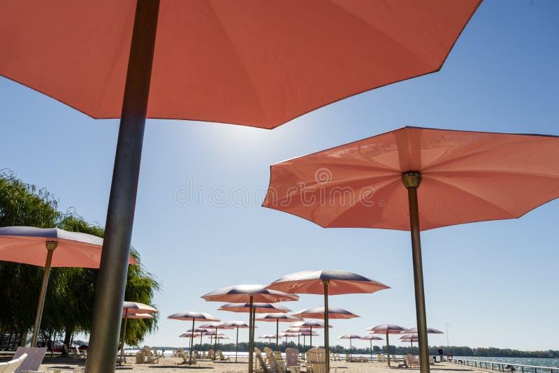 Onder de schaduw van roze strandparaplu's bij een strand stock afbeelding