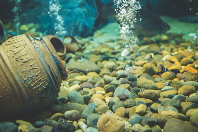 Onder diepzee, is er een grote vis die ver weg in diepzee zwemmen stock afbeelding